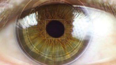 Photo of WhatsApp adding eye, fingerprint, face scanning