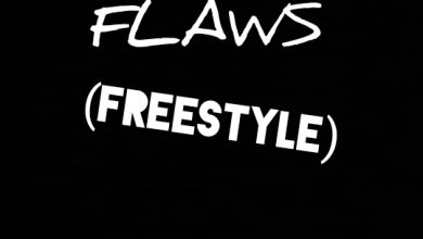 Photo of [mp3] McBrizzo – Flaws Freestyle